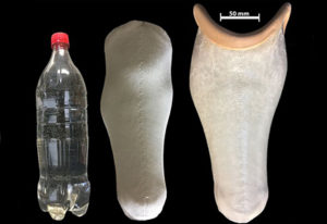 Recycled Plastic Used for Prosthetic Limbs